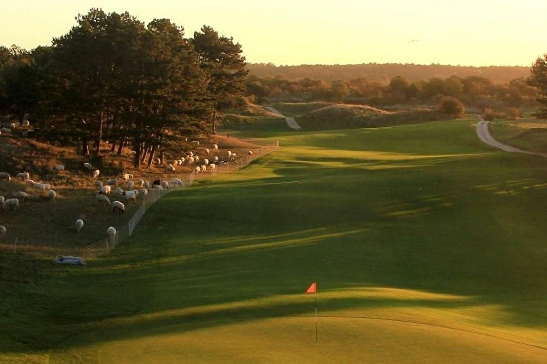 Golf Eat Sleep Repeat!